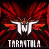 TNT Aka Technoboy 'N' Tuneboy - Tarantula (Edit)