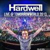 Hardwell Live @ Tomorrowworld