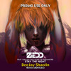 Stay The Night - Zedd Ft. Hayley Williams (DeeJay Shaolin Remix) FREE DOWNLOAD