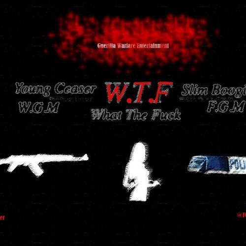W.T.F Ft $lim Boogie