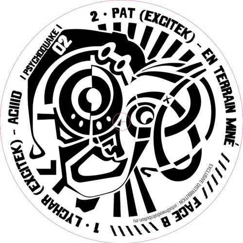 Psychoquake 02 (Vinyl & Digital)