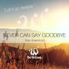 De Hofnar - Never Can Say Goodbye (Original Mix)