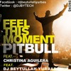 Pitbull - Feel This Moment ft. Christina Aguilera ( Remix 2013 )