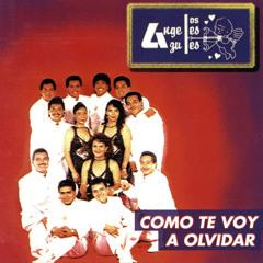 LOS ANGELES AZULES - AMOR DE AMORES ORIGINAL EXTENDED PERCAPELLA BY DJ JOHN