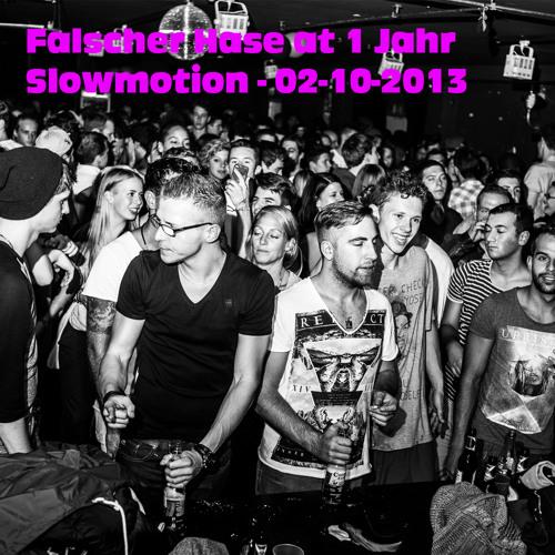 Falscher Hase at 1 Jahr Slowmotion - 02-10-2013