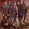 Evanescence - Going Under (Extended Rare Version)