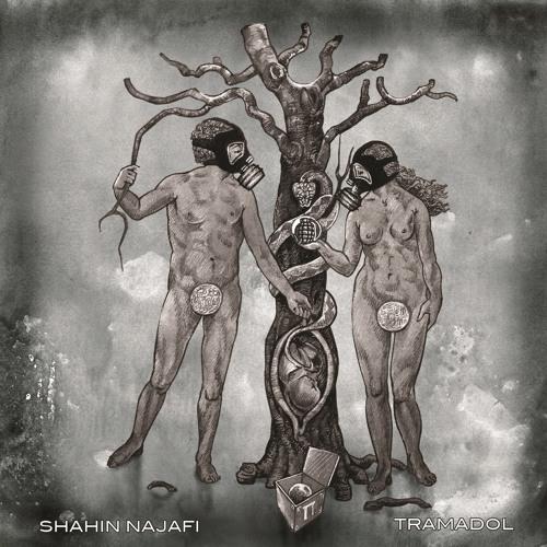 Shahin Najafi - Zaar Mizanam (Album Tramadol)
