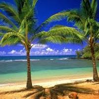 Tyson of El Dorado - Verano (A Song About Summer)