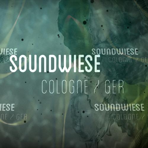 Soundwiese - DJ set @ Echogarden (Tabakfabrik-Linz-Austria-24.08.13)