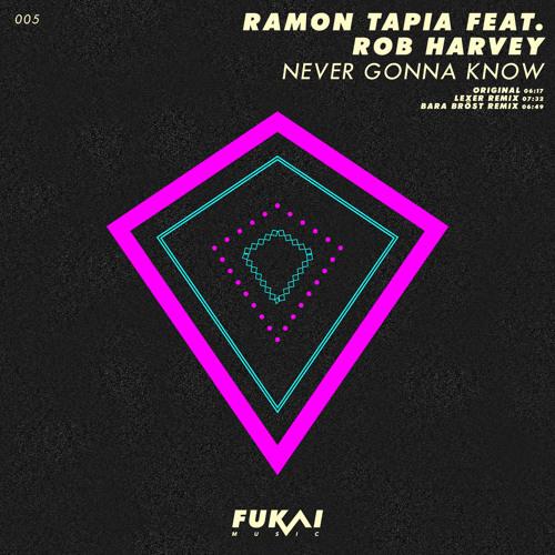 Ramon Tapia feat. Rob Harvey - Never Gonna Know (Original Mix) [Fukai Music]