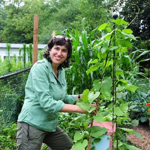 Organic food grower shares her passion, story and tips