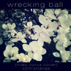 Wrecking Ball - Miley Cyrus [cover]