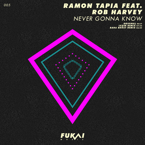 Ramon Tapia & Rob Harvey - Never Gonna Know (Lexer Remix)