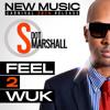 Shal Marshall - Feel 2 Wuk @shalmarshal @riddimstreamit