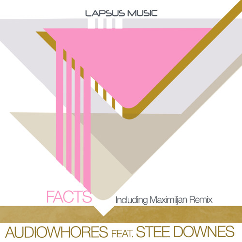 Audiowhores feat. Stee Downes - Facts (Original Vibe)