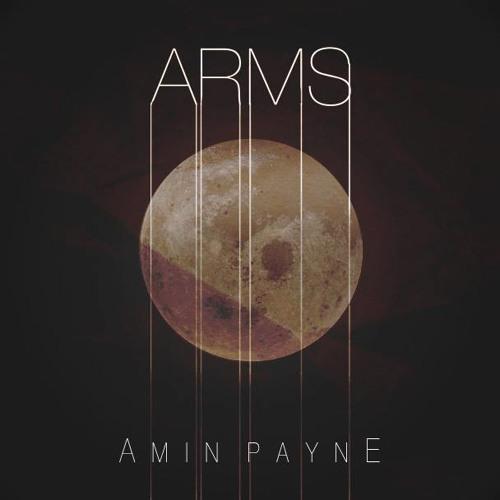 Arms [Amin Payne Remix]