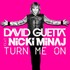 David Guetta ft. Nicki Minaj - Turn Me On - [BOGIA Feat BINH MEO]