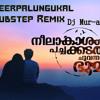 Neerpalungukal (Neelakasham Pachakadal Chuvanna Choomi) - Dubstep Remix