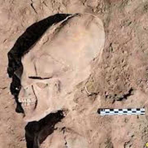 alien female corpse discovered in sibera - 461×442