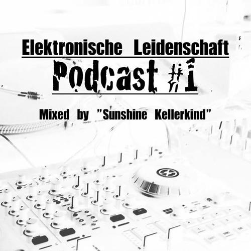 ElektronischeLeidenschaft Podcast #1  by Sunshine Kellerkind
