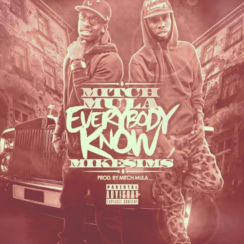Everybody Knows ( The Hoe Anthem)