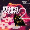 Teeko & B. Bravo present: Tempo Dreams Vol. 2 [Minimix / Album Sampler]
