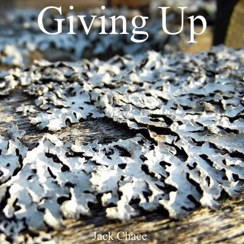 Giving Up - Jack Chace