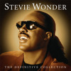 Stevie Wonder   I Just Called To Say I Love You   ( LIVE COVER   Paio )