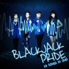 2NE1 - BlackJack Pride  (23 songs in one!)