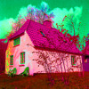 Pink Houses (John Mellencamp cover)