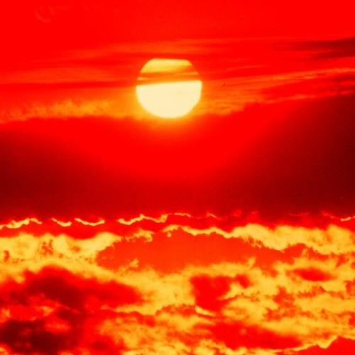 Matt Bogard - Red Line - Summer Heat