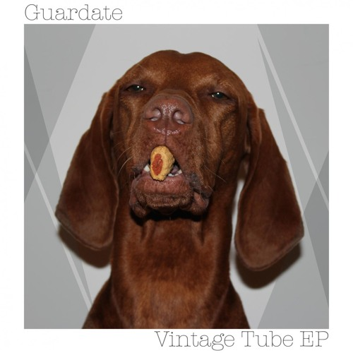 Guardate - Vintage Tube (Snippet)