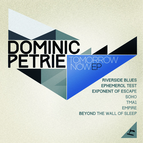 Dominic Petrie - Riverside Blues (Ingredients Records)