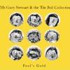 Mr.GARY STEWART & THE TIN FOIL COLLECTIVE-Sticks & Stones