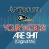 Juniperum Your Words Are Shit Original Mix mp3