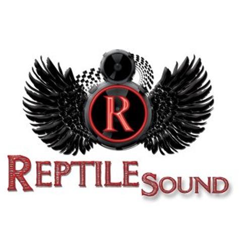 Exquisite Reggae 2013 Mix By Reptile Sound