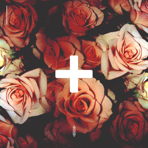 Roses+