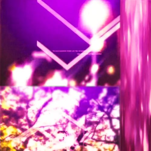 REST [BONUS DISC]