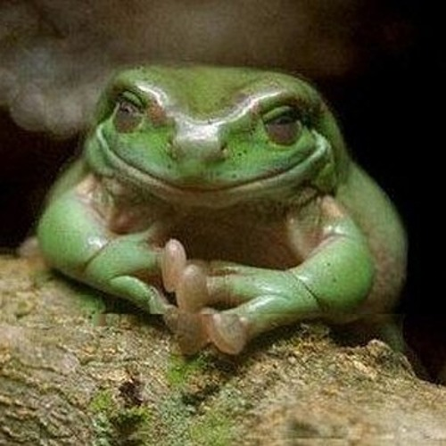 I control the Toad that controls your mind.