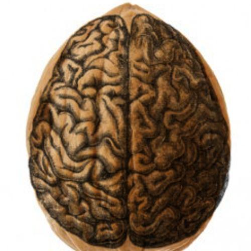 Nutshells In The Head
