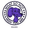 Free Download What So Not - High You Are Motez Remix Mp3