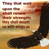 Isaiah 13:1 Wanted A Prophet Of God