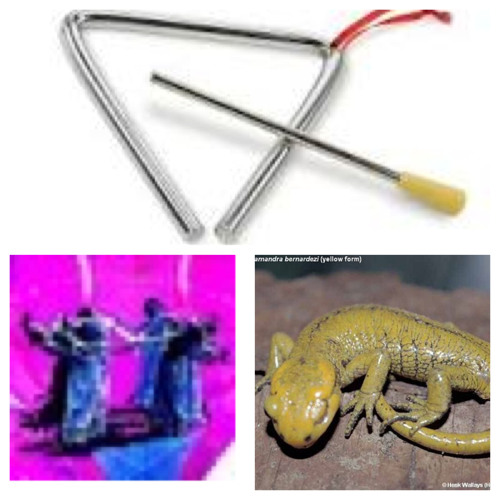 tһę ʘḅliɠɑŧiðήʂ/Yellow Salamand'r 4-broken triangle Modern Idiom