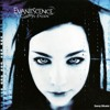 Evanescence - Wake Me Up Inside (e - Side Dubstep Remix)