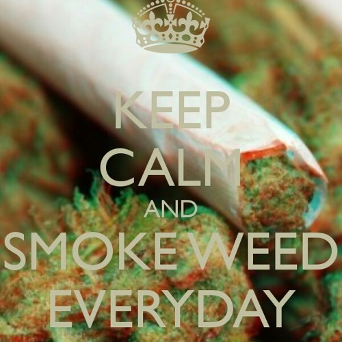 Snoop dogg Smoke Weed Everyday at Kohoutovice