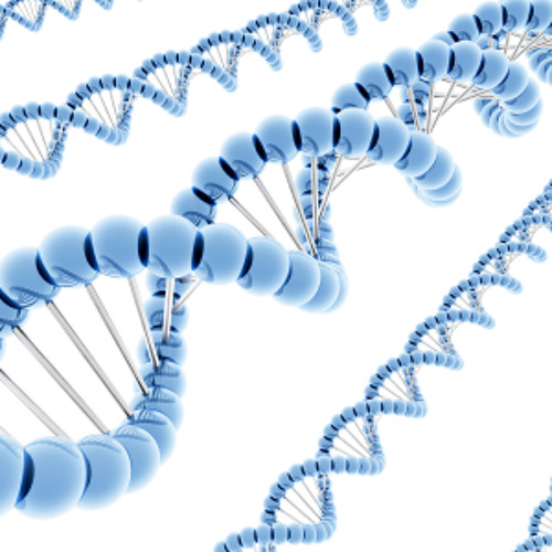 vs Psychogenetics - ParaGenetics