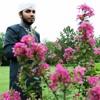 Burhan Raza Qadri (Mola Tu Rab Rehman Hai) New Album