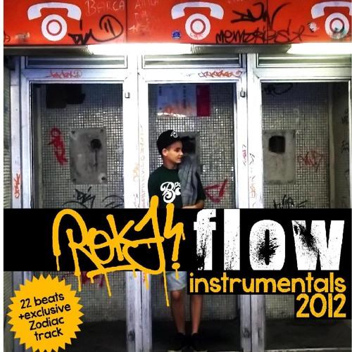 01 ROKAFLOW- Belépő