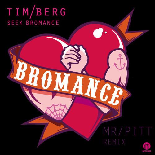 Seek Bromance By Tim Berg (PITT Remix)