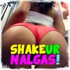 Shake Ur Nalgas! Twerk Mix